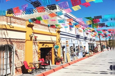 Travel Guide to Todos Santos