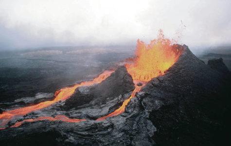 The Ecosystems of Hawaii After the Eruption